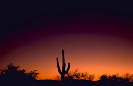 sabino-canyon-arizona-sunset