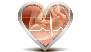 heart-baby