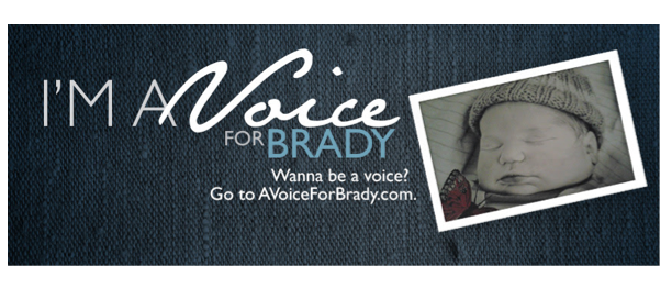 Brady Amendment campaign