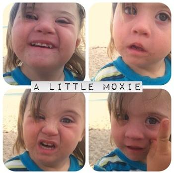 a-little-moxie