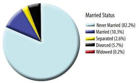 ohio-2013-abortion-report-married-status