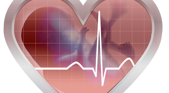 heartbeat-baby