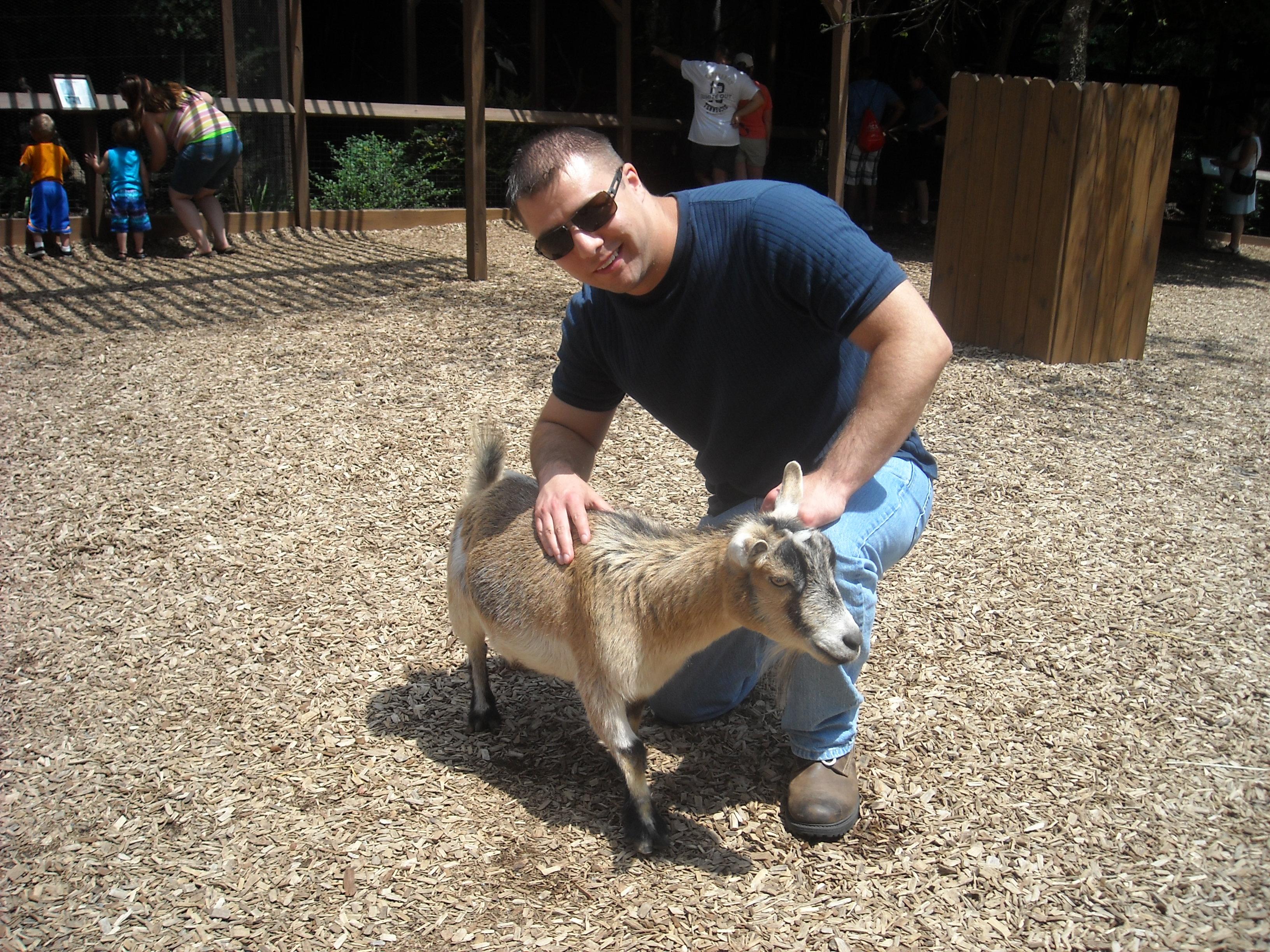 Goatpicture2