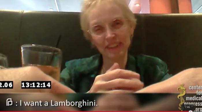 pro-life investigators video