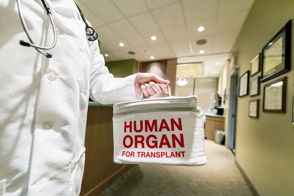 organ.donation.web_