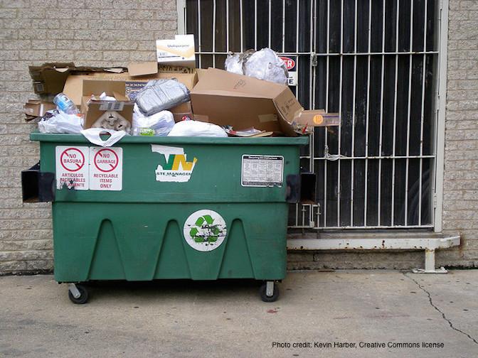 DumpsterTrash