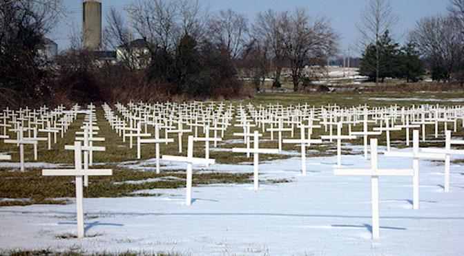 memorial-crosses-672