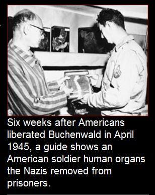 PBS Human organs Nazi
