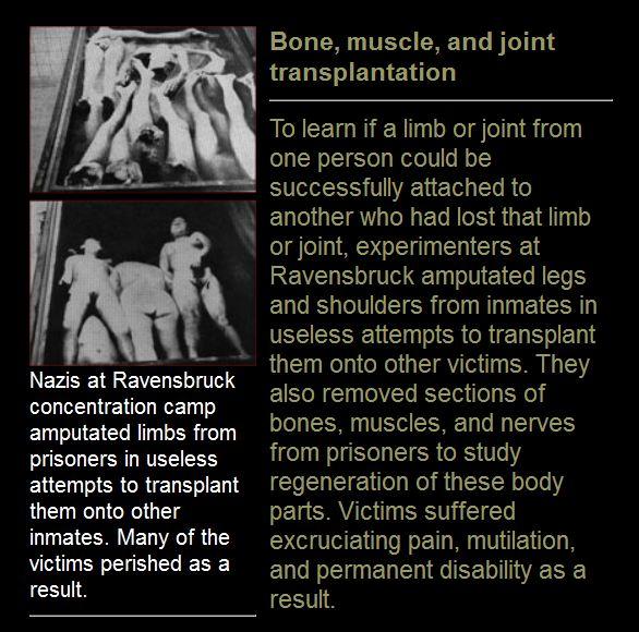 PBS Human organs experiments Nazi