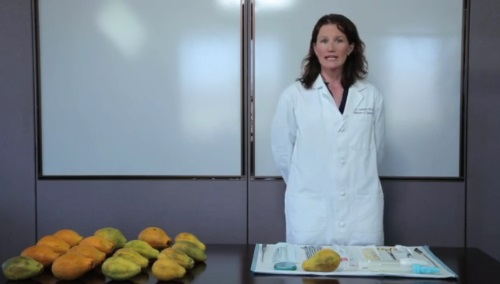 Image: UCSF's Jody Steinauer Papaya Workshop