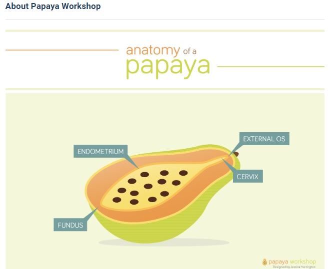 Image: UCSF Innovating Education Papaya Workshop teaches abortion