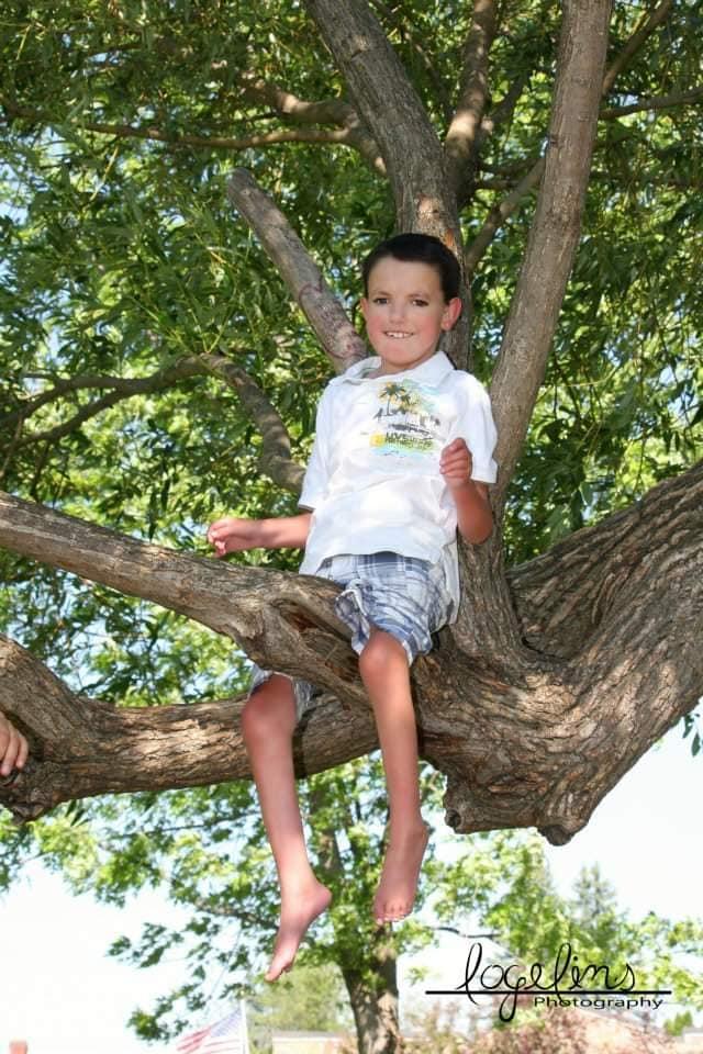 Kayden Trisomy 18 tree