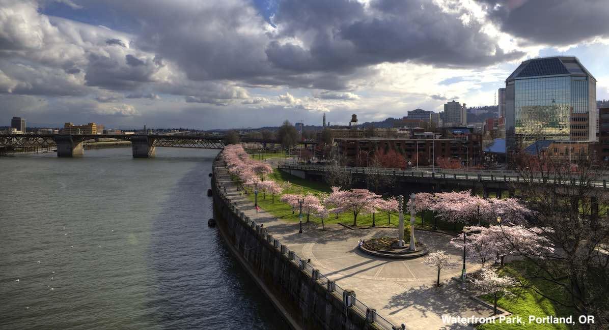 Portland, free speech