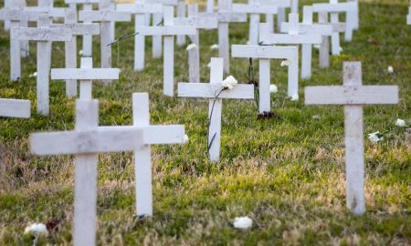 crosses, memorial, unborn, aborted