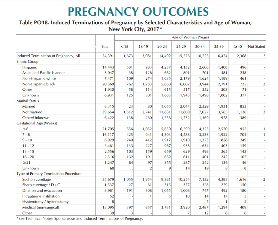 New York City Induced abortions report 2017