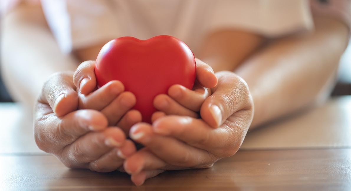 adult and child hands holding red heart, health care, donate and family insurance concept,world heart day, world health day,