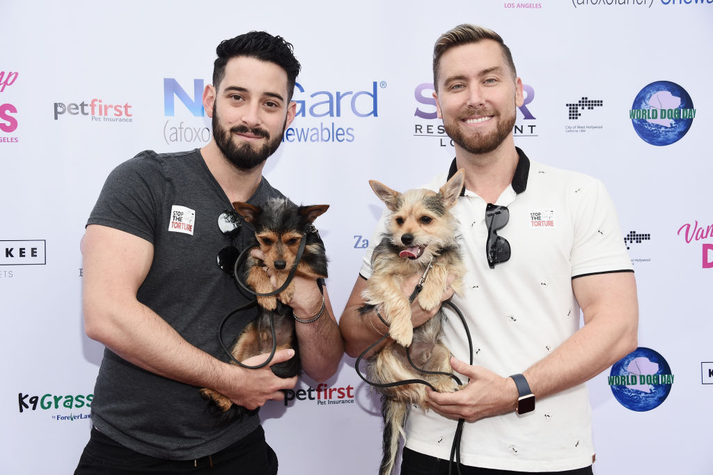 Lisa Vanderpump And The Vanderpump Dog Foundation's 3rd Annual World Dog Day